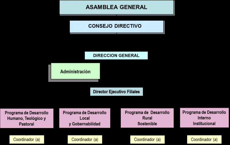 Organigrama PagWeb
