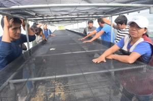 Visita experiancia de secador solar de café